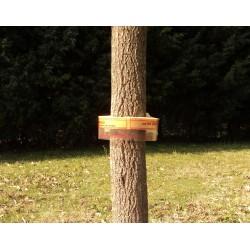 Barrera anti-hormigas