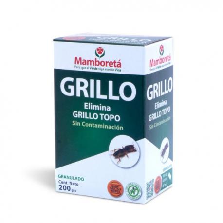 Mamboreta GRILLO